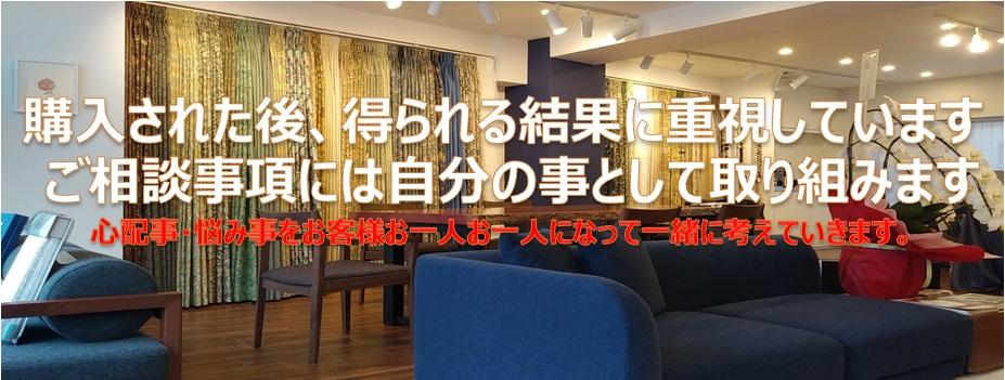 日本フィスバ
